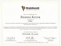 CSS2 Certificate